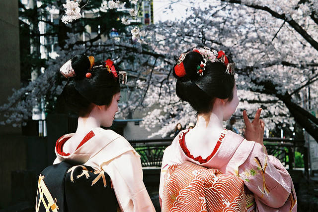 >Geishas during Sakura season, Kyoto, Japan&#8221; width=&#8221;640&#8243; height=&#8221;428&#8243; /></p> <p class=