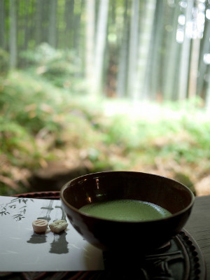 Drinking Green tea at Hokokuji Temple, Kamakura