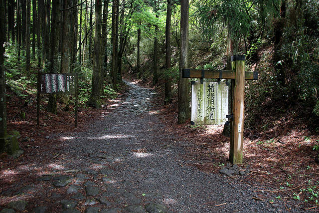 Hiking the old Tokaido Road, Hakone, Japan