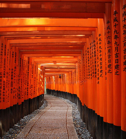 Thousands and thousands of Torii, Japan
